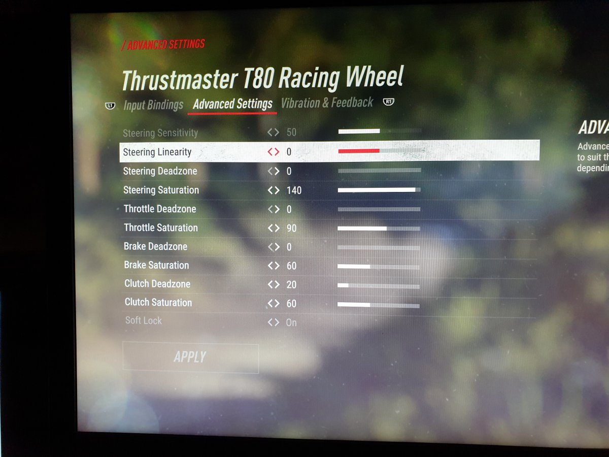 DIRT RALLY 2 0--- post your wheel and ffb setting! - General