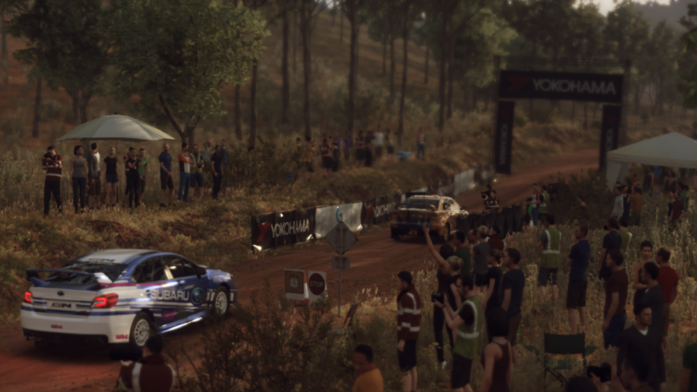 DiRT Rally 2_0_20190307204759.png