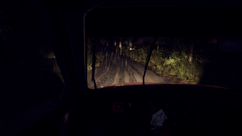 DiRT Rally 2_0_20190416165629.png
