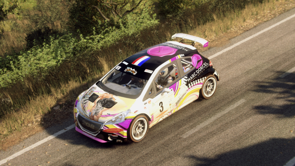 Dirt Rally 2 Screenshot 2019.04.20 - 17.33.55.35.png