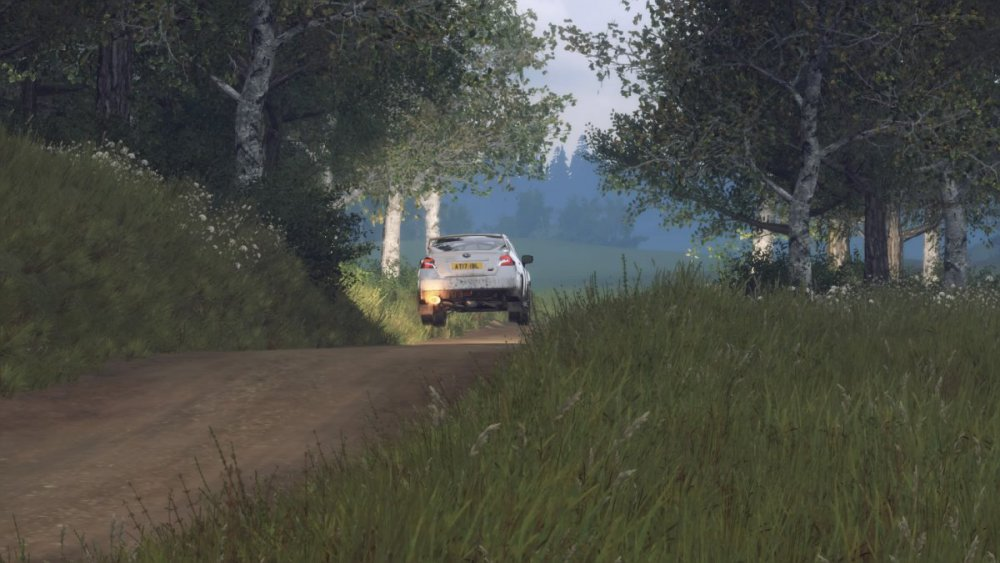 41508175_DiRTRally2_0_20190726202905.thumb.jpg.3afc4510dfad416b78cdd79aa448de67.jpg