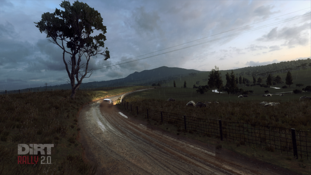 DiRT Rally 2_0_20190727225749.png