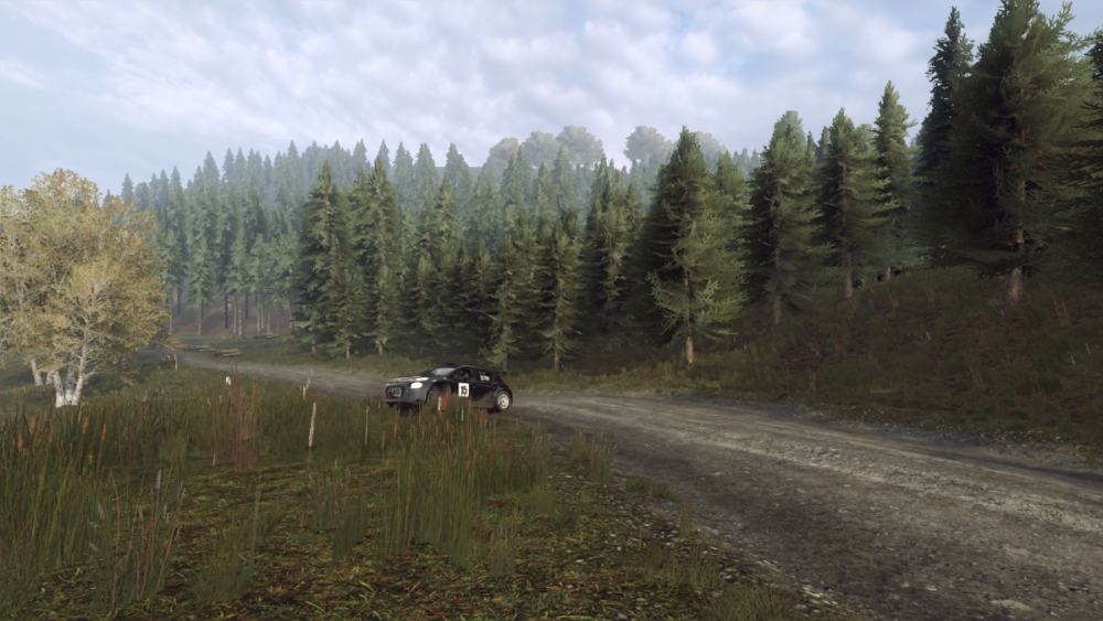 DiRT Rally 2.0.png