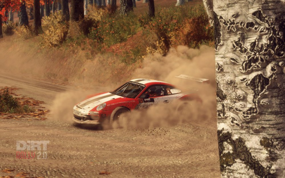 dirtrally2_2019_08_24_08_15_20_829.thumb.jpg.341953a2d0a529495fe59fbe4cdf40de.jpg