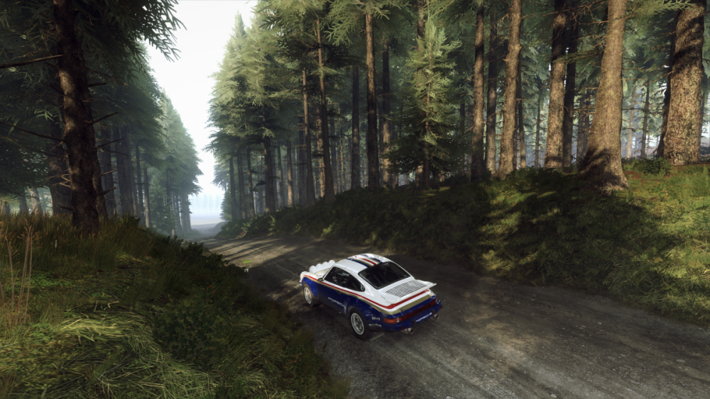 rich1eI_DiRTRally20_20190804_21-02-26.png