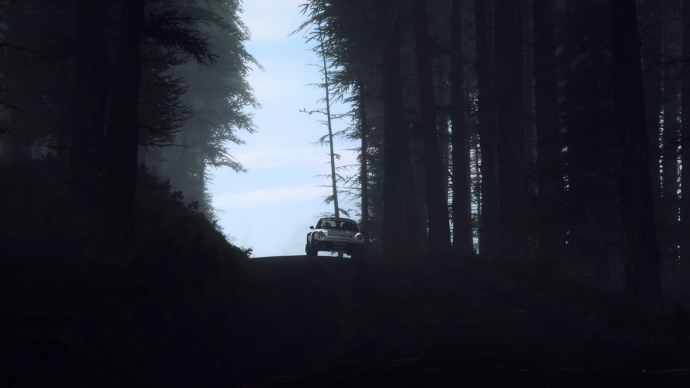 rich1eI_DiRTRally20_20190804_21-04-24.png