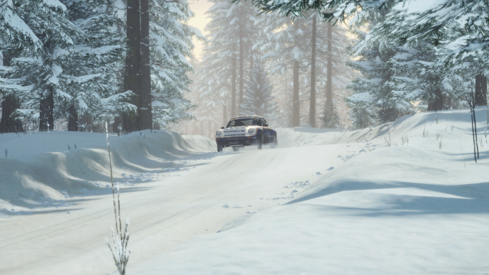 rich1eI_DiRTRally20_20190804_22-16-37.png
