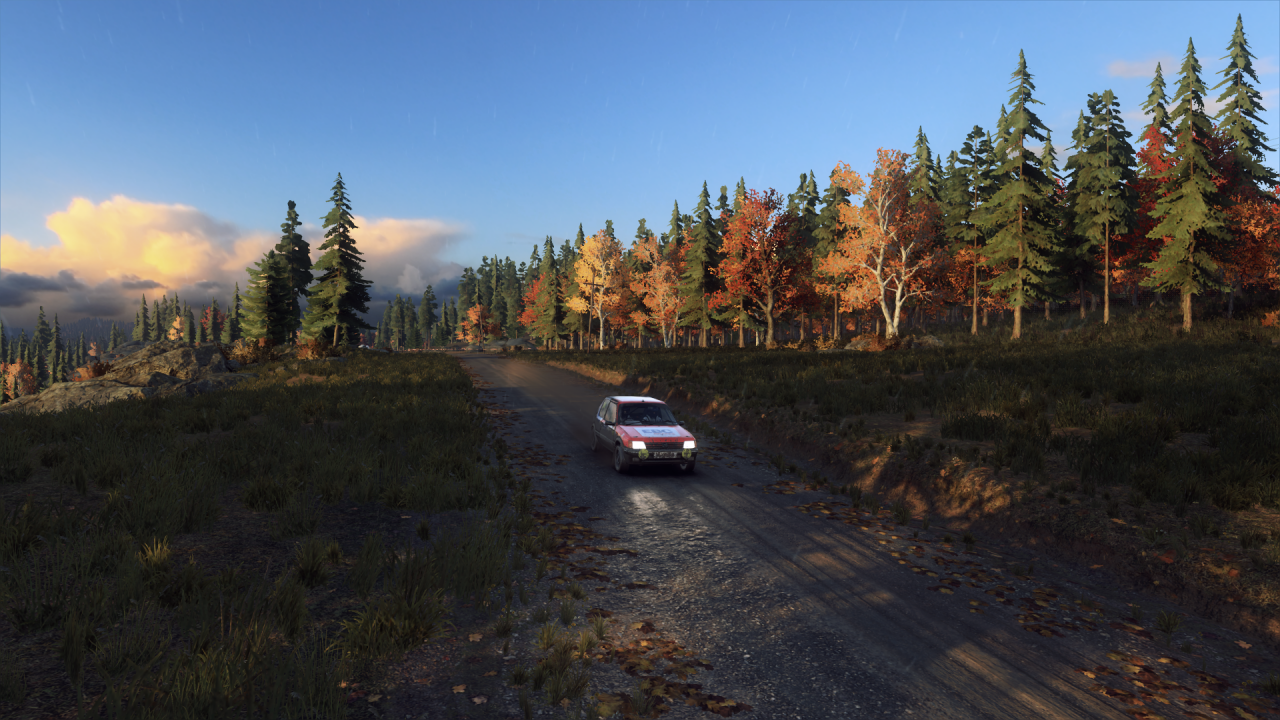 DiRT Rally 2_0_20191022160809.png