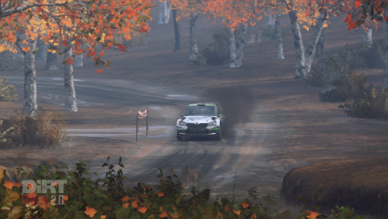DiRT Rally 2.0 18_03_2019 20_14_58.png