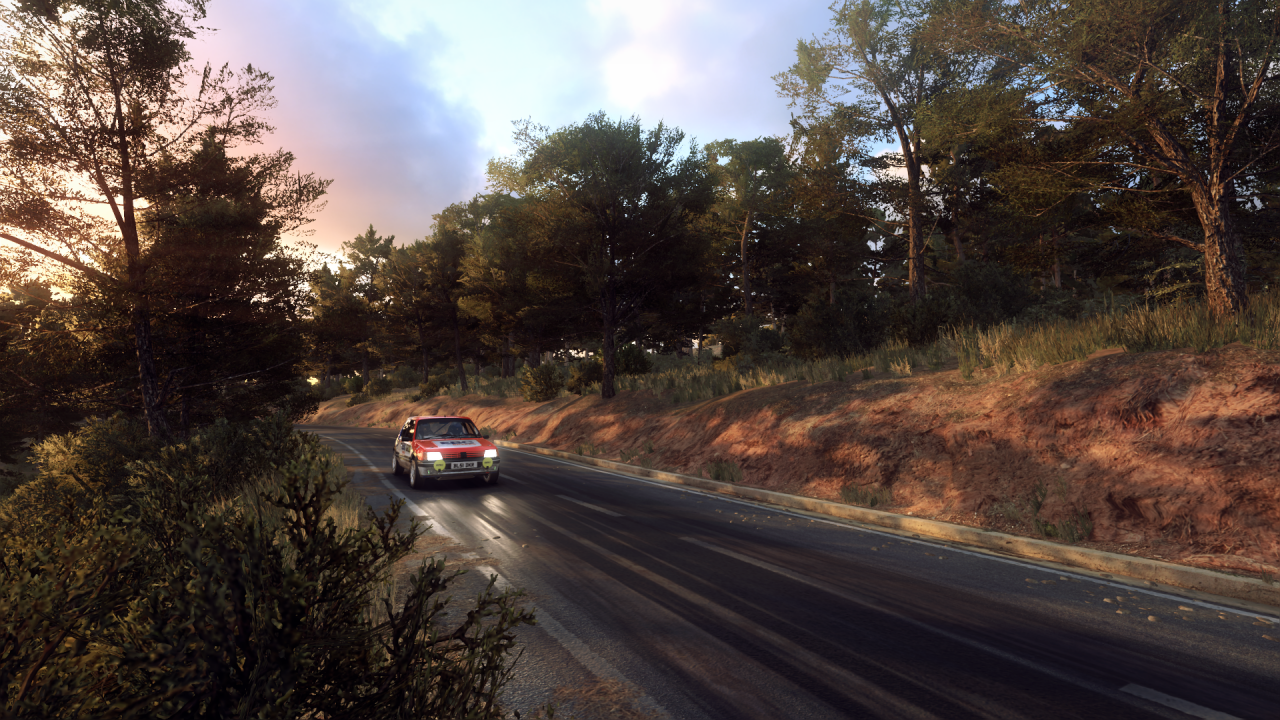 DiRT Rally 2_0_20191022020703.png