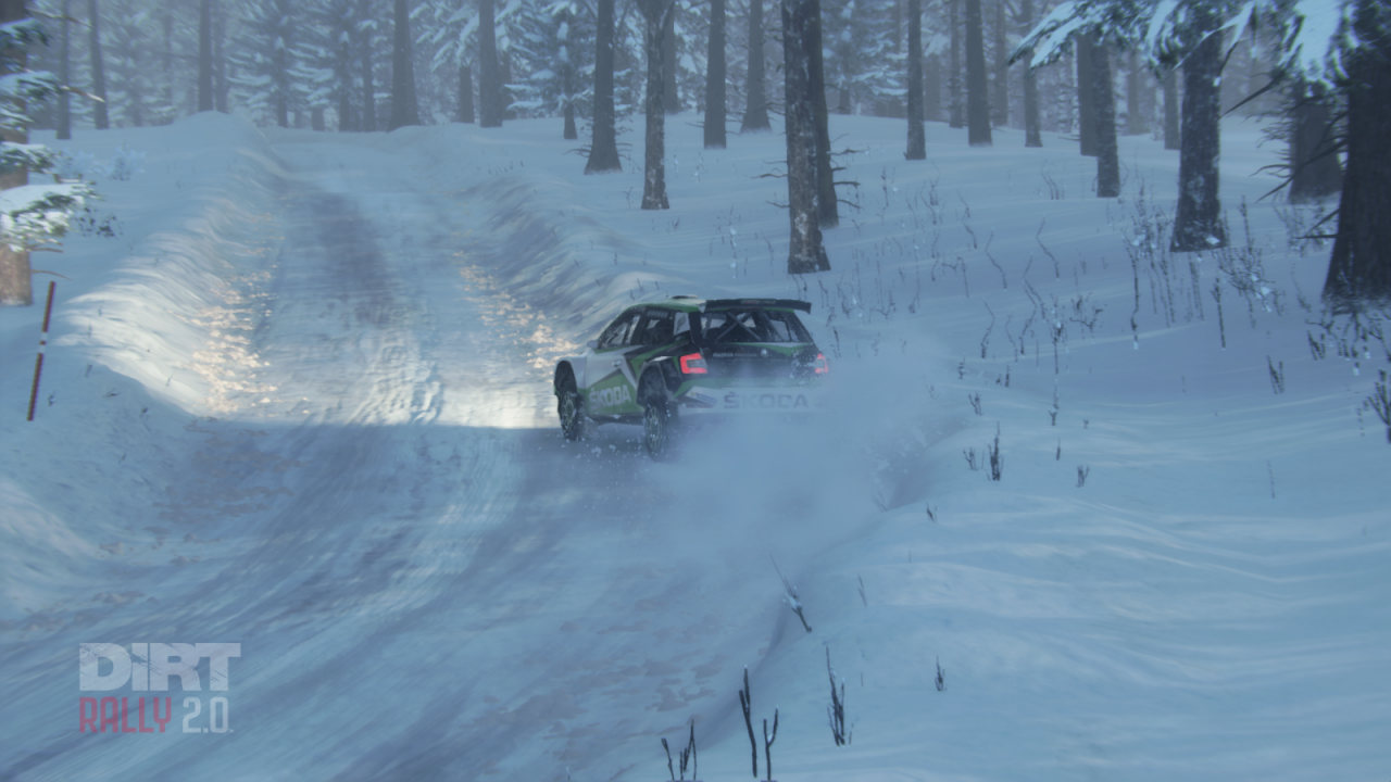 DiRT Rally 2.0 20_05_2019 14_29_05.png