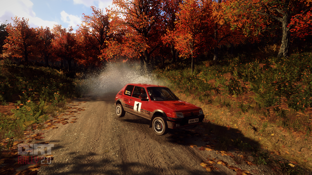 DiRT Rally 2_0_20191101190358.png