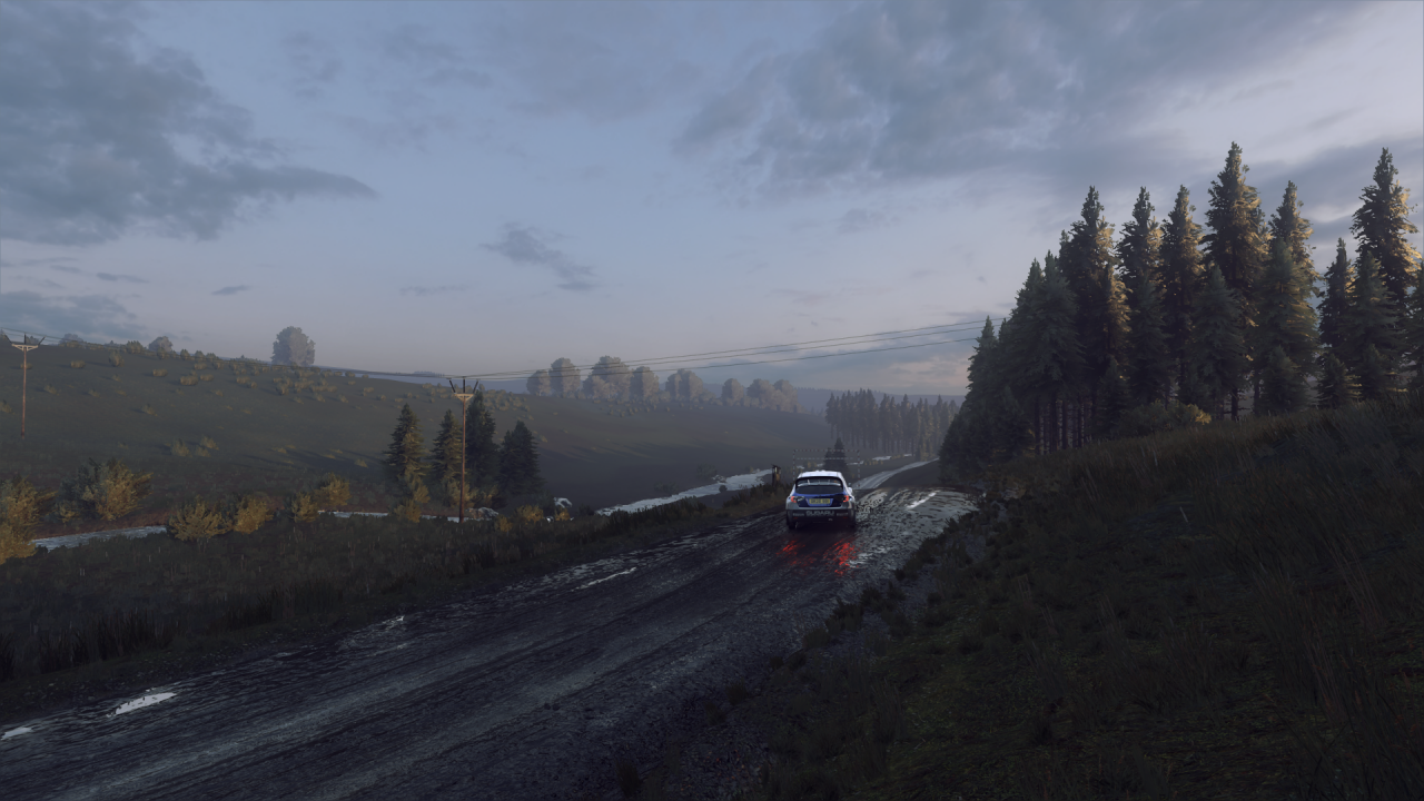 DiRT Rally 2_0_20200127023613.png