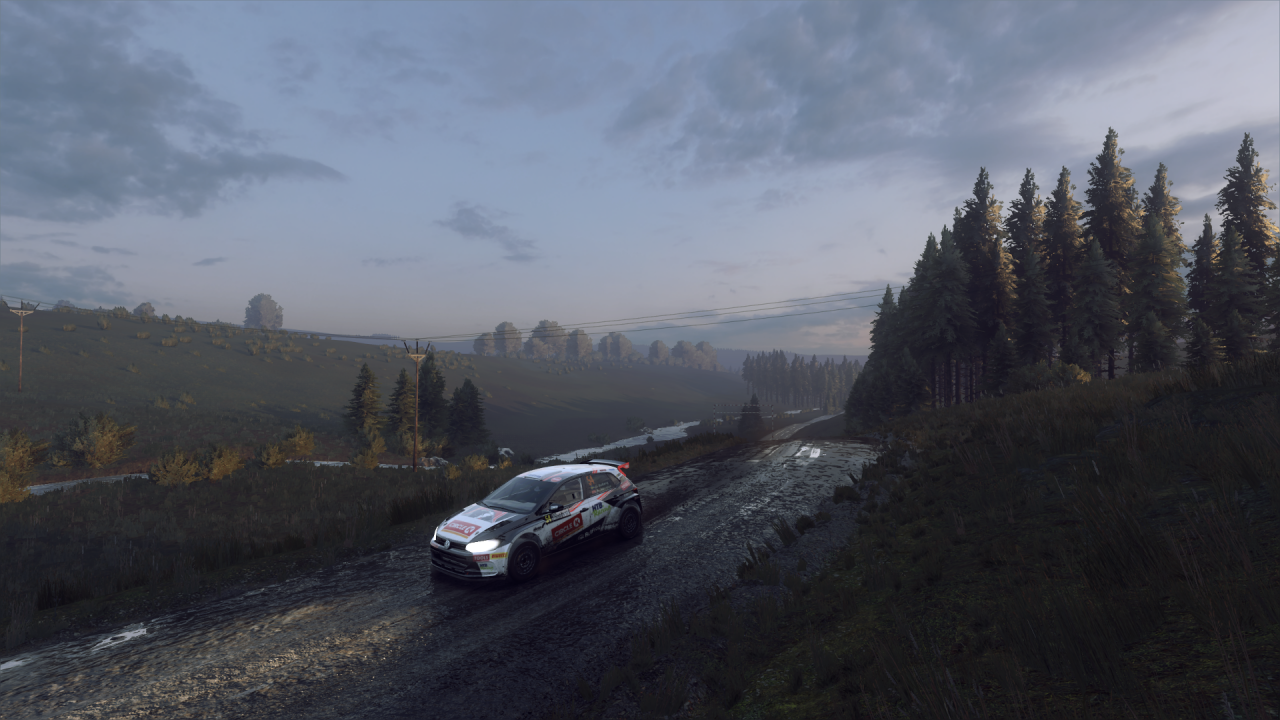 DiRT Rally 2_0_20200203224429.png