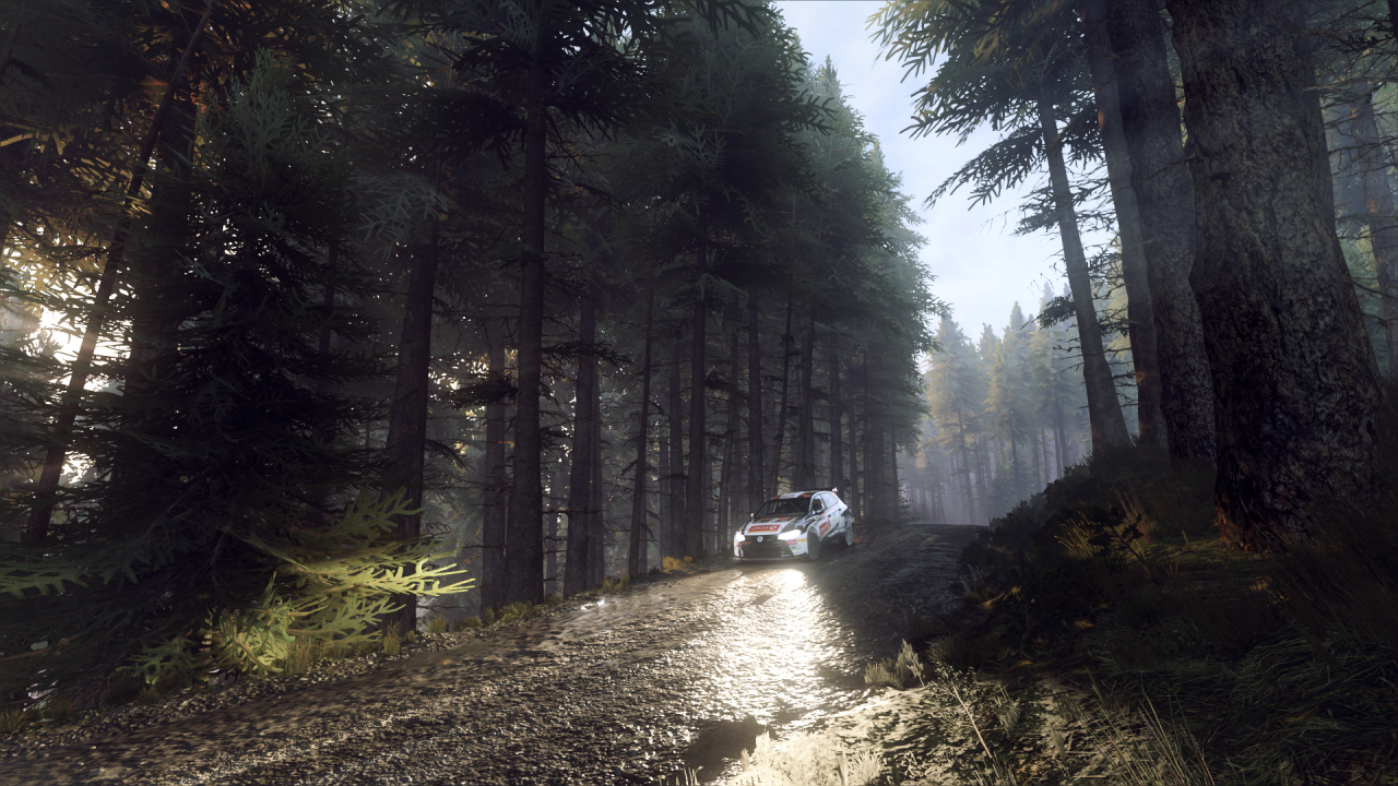 DiRT Rally 2_0_20200203224049.png