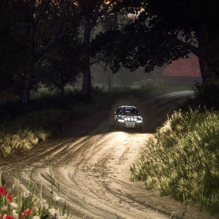 Dirt Rally 2 Screenshot 2019.10.14 - 16.51.42.44.jpg