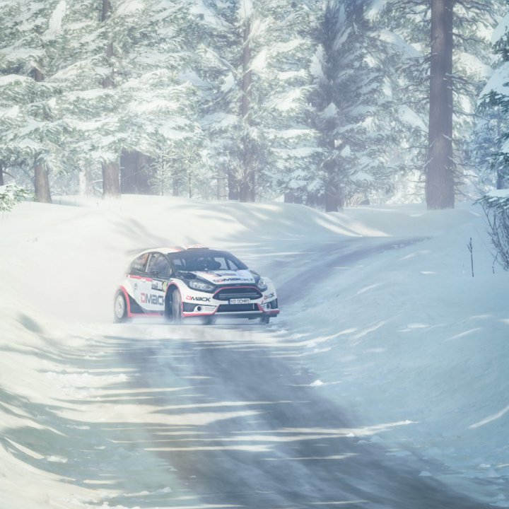 Dirt Rally 2 Screenshot 2019.10.06 - 16.56.48.49.jpg