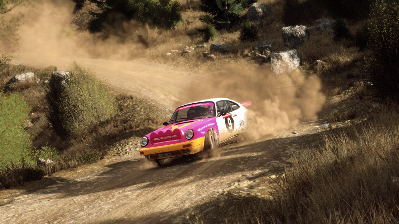 rich1eI_DiRTRally20_20190922_21-15-36.png