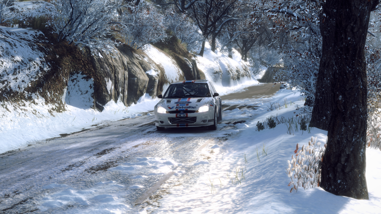 DiRT Rally 2_0_20200330210825.png