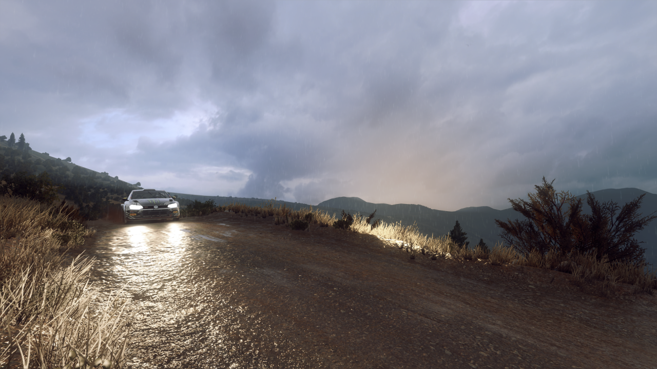 DiRT Rally 2_0_20200319193401.png