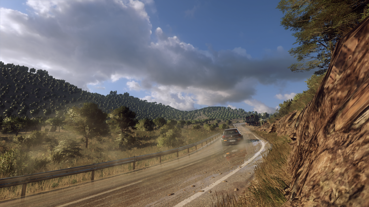 DiRT Rally 2_0_20200311234734.png