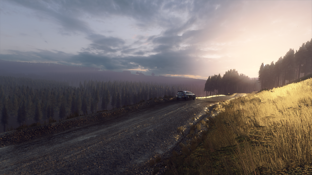 DiRT Rally 2_0_20200318150558.png