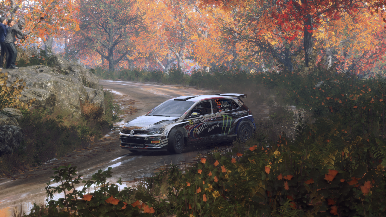 DiRT Rally 2_0_20200318143448.png
