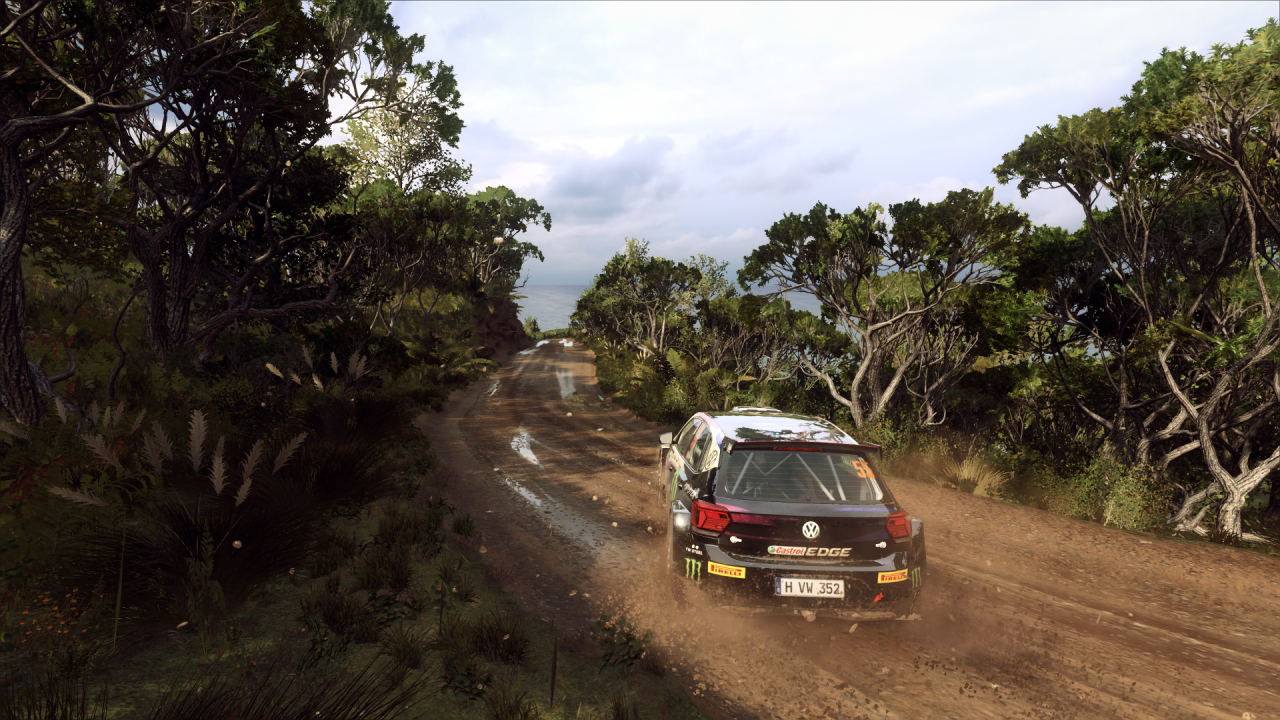 DiRT Rally 2_0_20200318140022.png