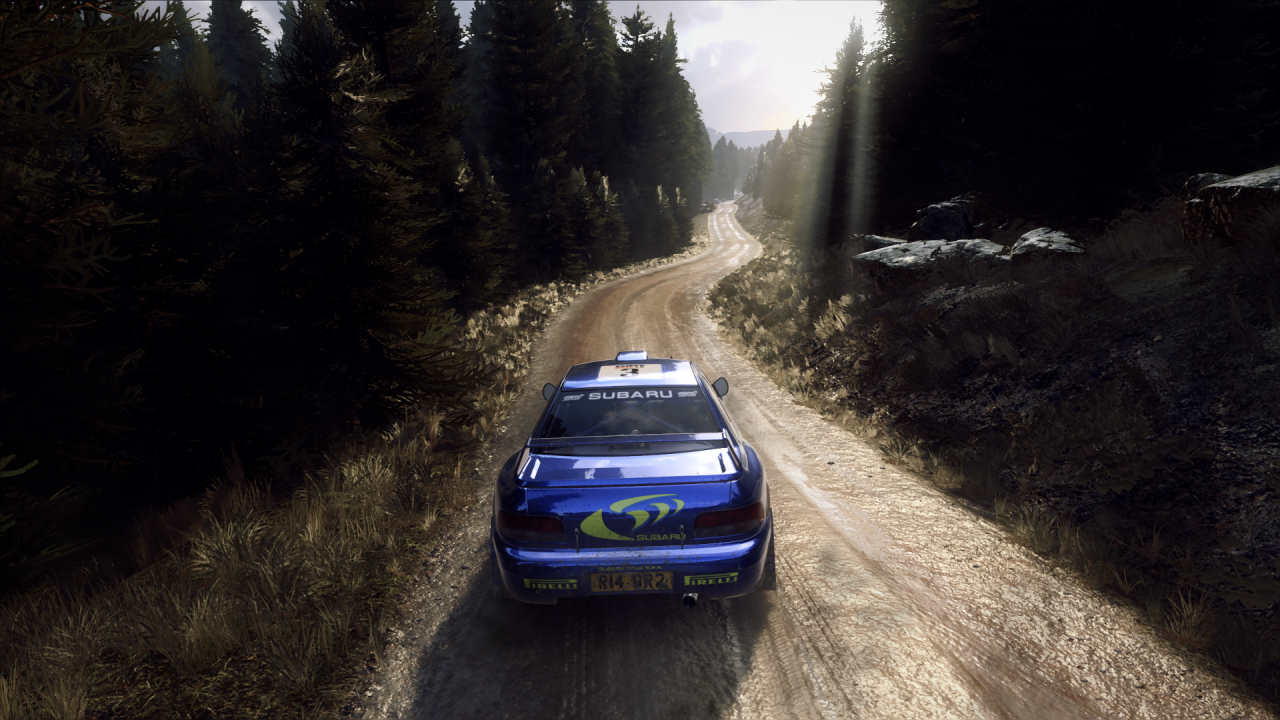 DiRT Rally 2_0_20200326030333.png