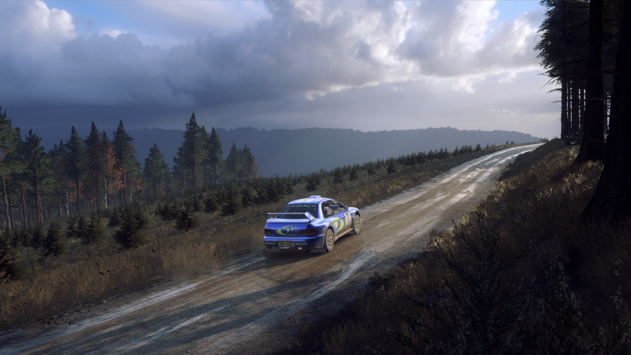 DiRT Rally 2_0_20200326030101.png