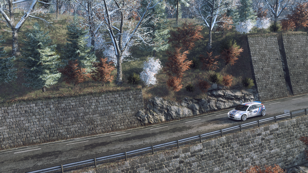 DiRT Rally 2_0_20200330211309.png