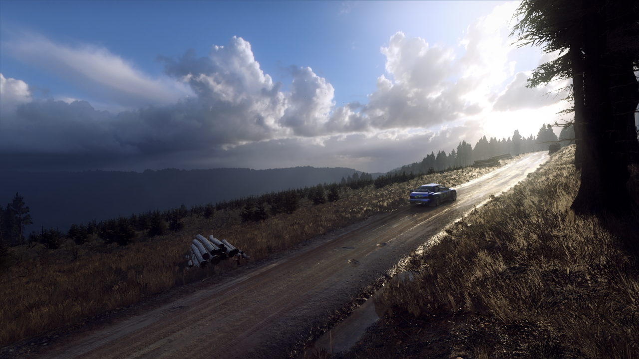 DiRT Rally 2_0_20200326030124.png