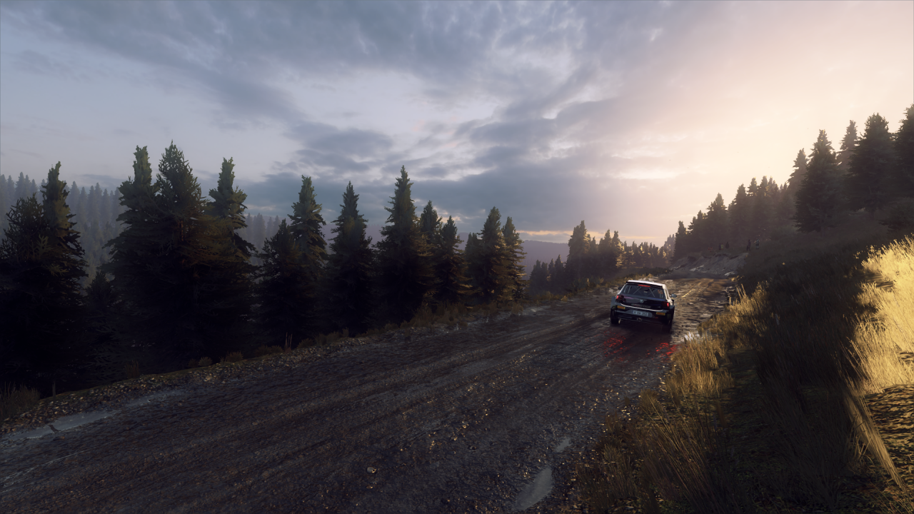 DiRT Rally 2_0_20200318150514.png