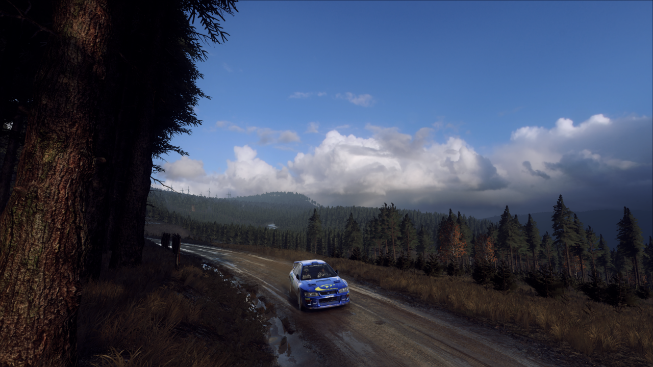 DiRT Rally 2_0_20200326030115.png