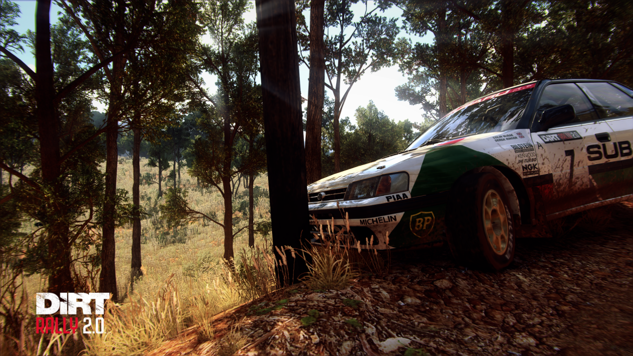 Dirt_Rally_2_Screenshot_2020_03.25_-_20_08_04_47.png
